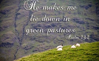 Psalm 23v2